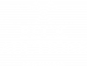Beck Auctions Inc